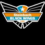 Black Wings Linz Eishockey